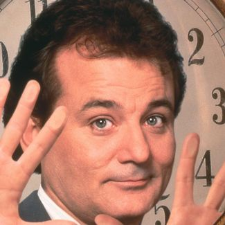 The actor Bill Murray